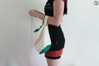 WIP's Transportable Bag