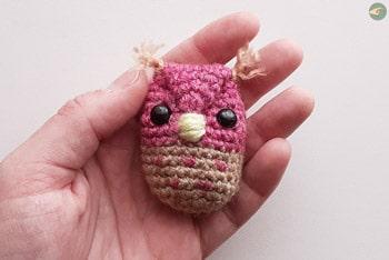 Ernesto the Owl