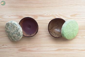 Coconut Lids